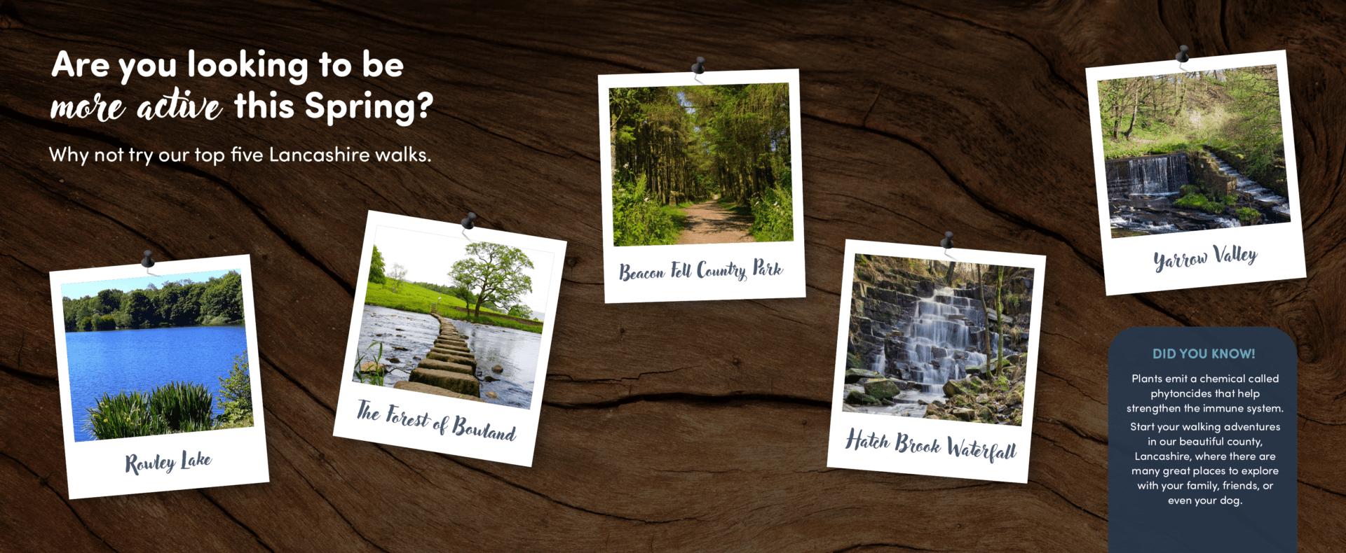 Image of Top five Lancashire Walks